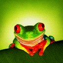 Froggy jpg avatar
