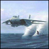Plane waterski avatar