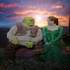 Shrek and Fiona sunset avatar
