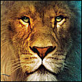 Aslan the Lion avatar