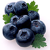Blueberries 2 avatar