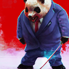 Business Panda avatar