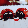 Ladybugs in love avatar