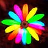 Colorful flower avatar