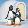 Pingu Family Igloo avatar
